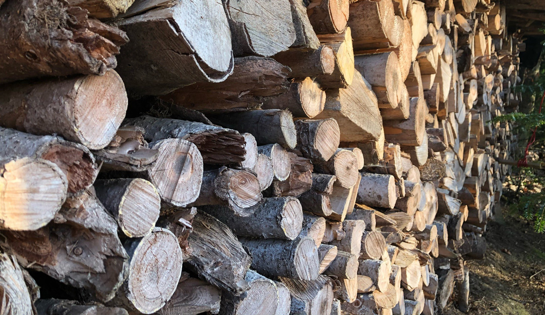 Holz für Schwarzwaldkraft Holzschmuck